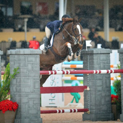 Dollar-high-junior-jumper-2