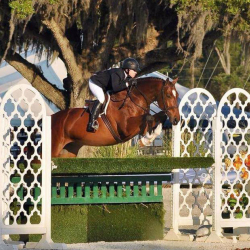 My-way-hunter-derby-equitation