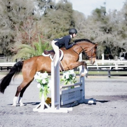 Notable-childrens-equitation-2