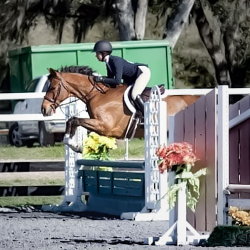 Notable-childrens-equitation