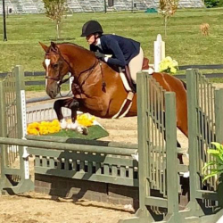 Notable-hunter-equitation