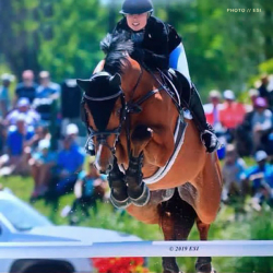 Eddie-grand-prix-jumper-2