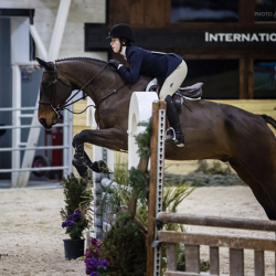 Brownie-equitation-1