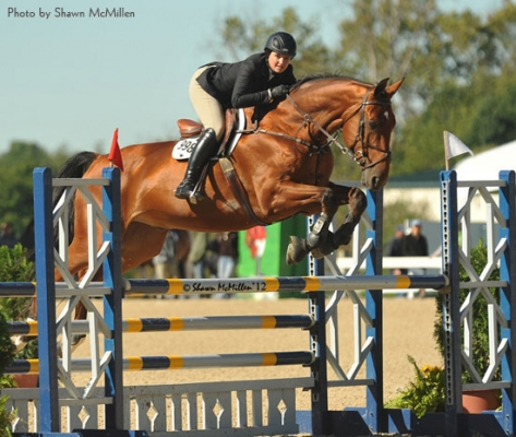 Not just for babies, Hunter Breeding preps owners for