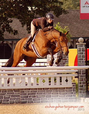 Not just for babies, Hunter Breeding preps owners for ...