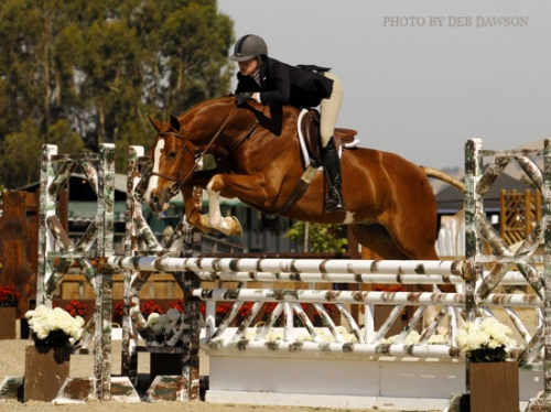 Not Just For Babies Hunter Breeding Preps Owners For