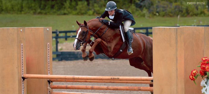 Lake-pointe-show-stables-1